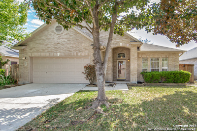 San Antonio TX Single Family Home New: $215,000
