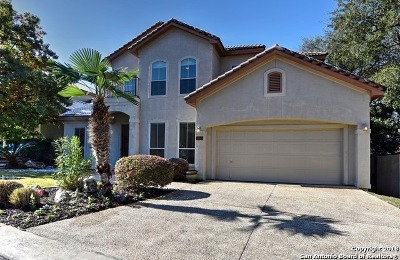San Antonio Single Family Home New: 18915 Las Vistas