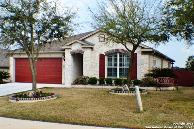 Cibolo Single Family Home New: 5329 Storm King