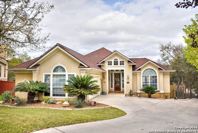 San Antonio TX Single Family Home New: $479,900