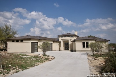 New Braunfels Single Family Home For Sale: 1420 Vintage Way