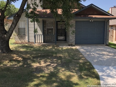 San Antonio Single Family Home New: 3821 Candlecrown Ct