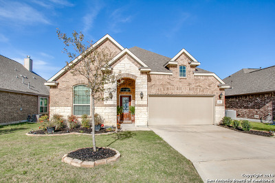 San Antonio TX Single Family Home New: $284,500
