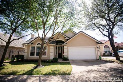 San Antonio TX Single Family Home New: $417,500