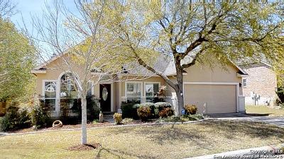 San Antonio TX Single Family Home New: $372,500
