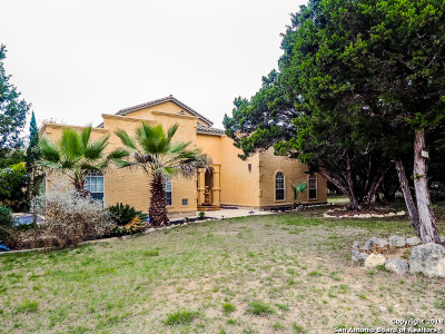 Spring Branch Single Family Home For Sale: 1197 Stirrup Dr
