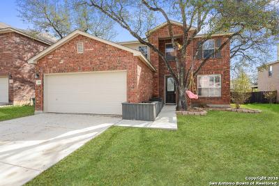 San Antonio TX Single Family Home New: $269,999
