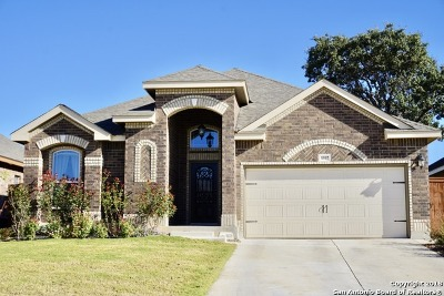 San Antonio TX Single Family Home New: $295,000