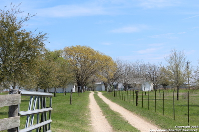 Guadalupe County Farm & Ranch New: 1535 Hoffman Rd