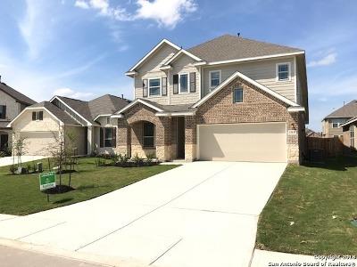 San Antonio Single Family Home New: 13815 Baltic Pass