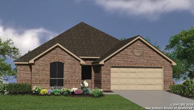 San Antonio Single Family Home New: 23031 Evangeline