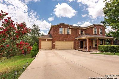 San Antonio Single Family Home New: 22018 Ranier Ln