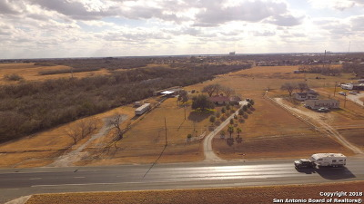 San Antonio Farm & Ranch For Sale: 14215 S Us Highway 181