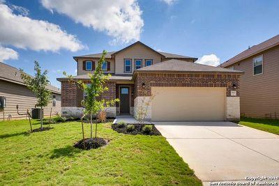 San Antonio TX Single Family Home New: $272,900