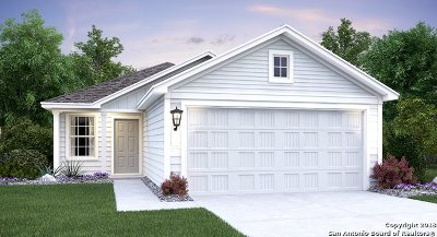 San Antonio TX Single Family Home New: $166,999