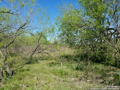 Wilson County Residential Lots & Land New: 00 Fm 536