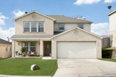 San Antonio TX Single Family Home New: $250,000