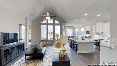 San Antonio TX Single Family Home New: $321,615