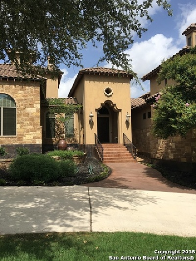 Boerne TX Single Family Home New: $1,100,000