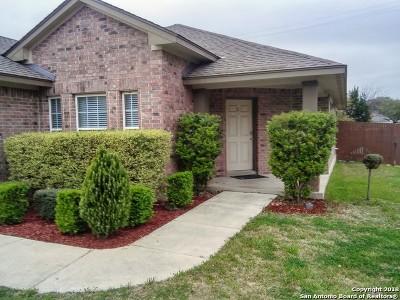 San Antonio TX Single Family Home New: $248,570