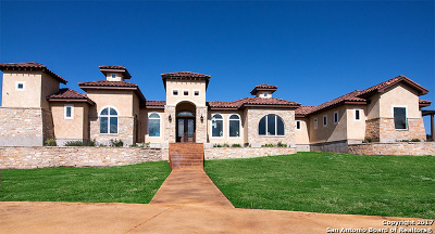 New Braunfels Single Family Home New: 1409 Vintage Way