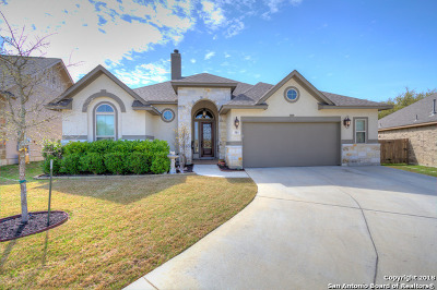 New Braunfels Single Family Home New: 311 Wauford Way