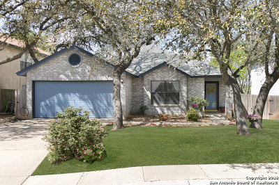 Helotes Single Family Home New: 9715 Diamond Cliff Dr