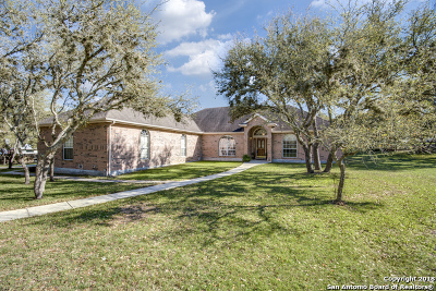 Fair Oaks Ranch Single Family Home New: 8510 Dietz Elkhorn Rd