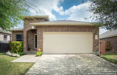 Helotes Single Family Home New: 10206 Homburg Ranch