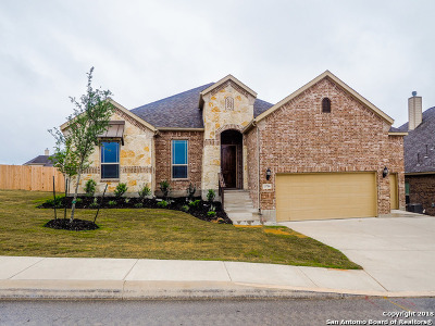 Bexar County Single Family Home For Sale: 13706 Astros