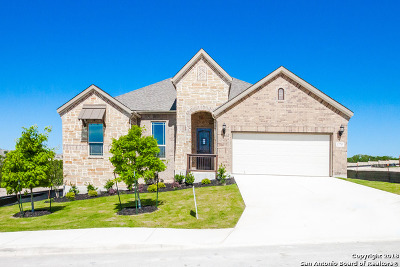 Bexar County Single Family Home For Sale: 13715 Astros
