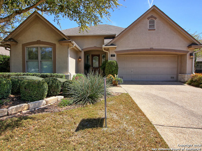 Heights At Stone Oak Single Family Home For Sale: 111 Garden Hill