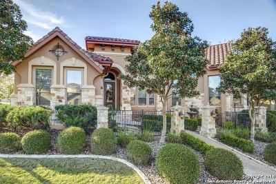 San Antonio TX Single Family Home New: $599,000