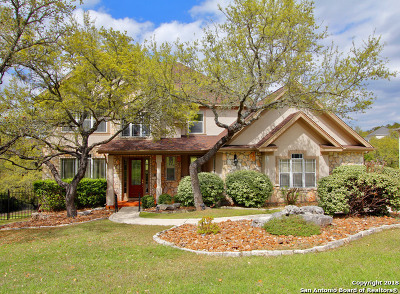 San Antonio Single Family Home New: 25015 Player Oaks