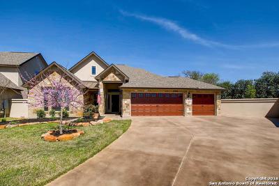 Boerne TX Single Family Home New: $460,000