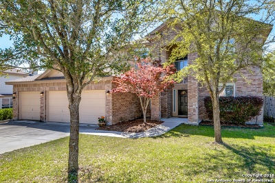 New Braunfels Single Family Home New: 853 San Fernando Ln