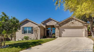 San Antonio Single Family Home New: 3203 Fontenay Park
