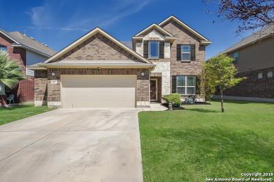 San Antonio Single Family Home New: 11827 Perla Joy