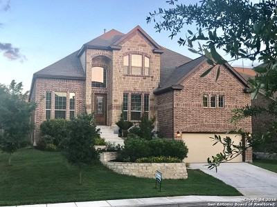 San Antonio Single Family Home For Sale: 930 Gazania Hill