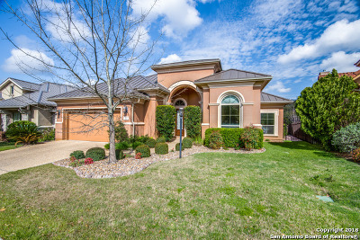 San Antonio TX Single Family Home New: $565,000
