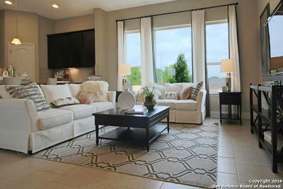 San Antonio Single Family Home New: 8213 Dublin Forest