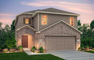 San Antonio Single Family Home New: 11718 Silver Sky