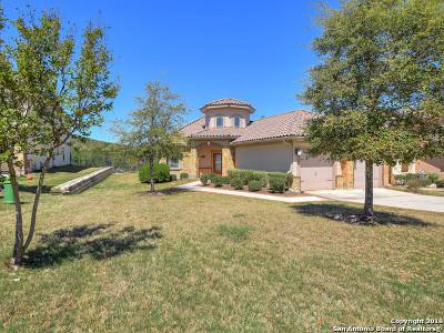 San Antonio Single Family Home New: 8139 Powderhorn Run