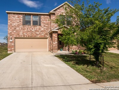 New Braunfels Single Family Home New: 3833 Legend Hill