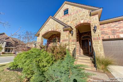 San Antonio TX Single Family Home New: $449,000