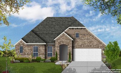 San Antonio TX Single Family Home New: $423,881