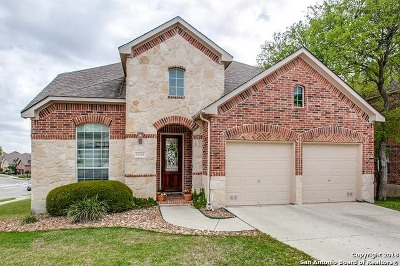 San Antonio Single Family Home New: 24038 Canyon Row