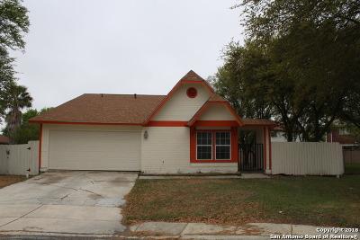 San Antonio TX Single Family Home New: $171,900