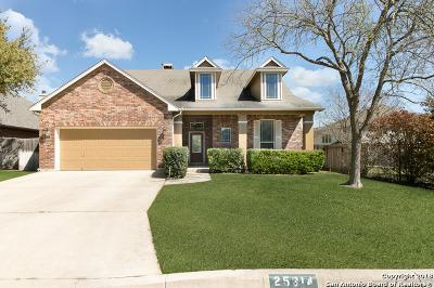 San Antonio Single Family Home New: 25314 Mesa Ranch