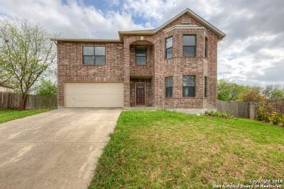 Cibolo Single Family Home New: 101 Springtree Grove